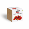 Kép 2/2 - Carolina reaper chili paprika növényem fa kaspóban-Katica Online Piac